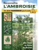 carte_reconnaitre_ambroisie